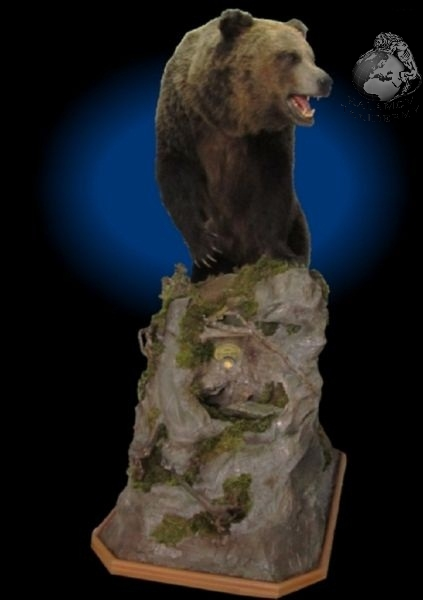 bear_taxidermy